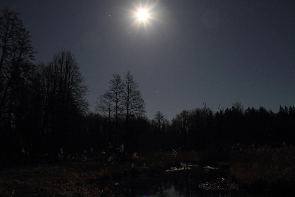 002-moon.jpg