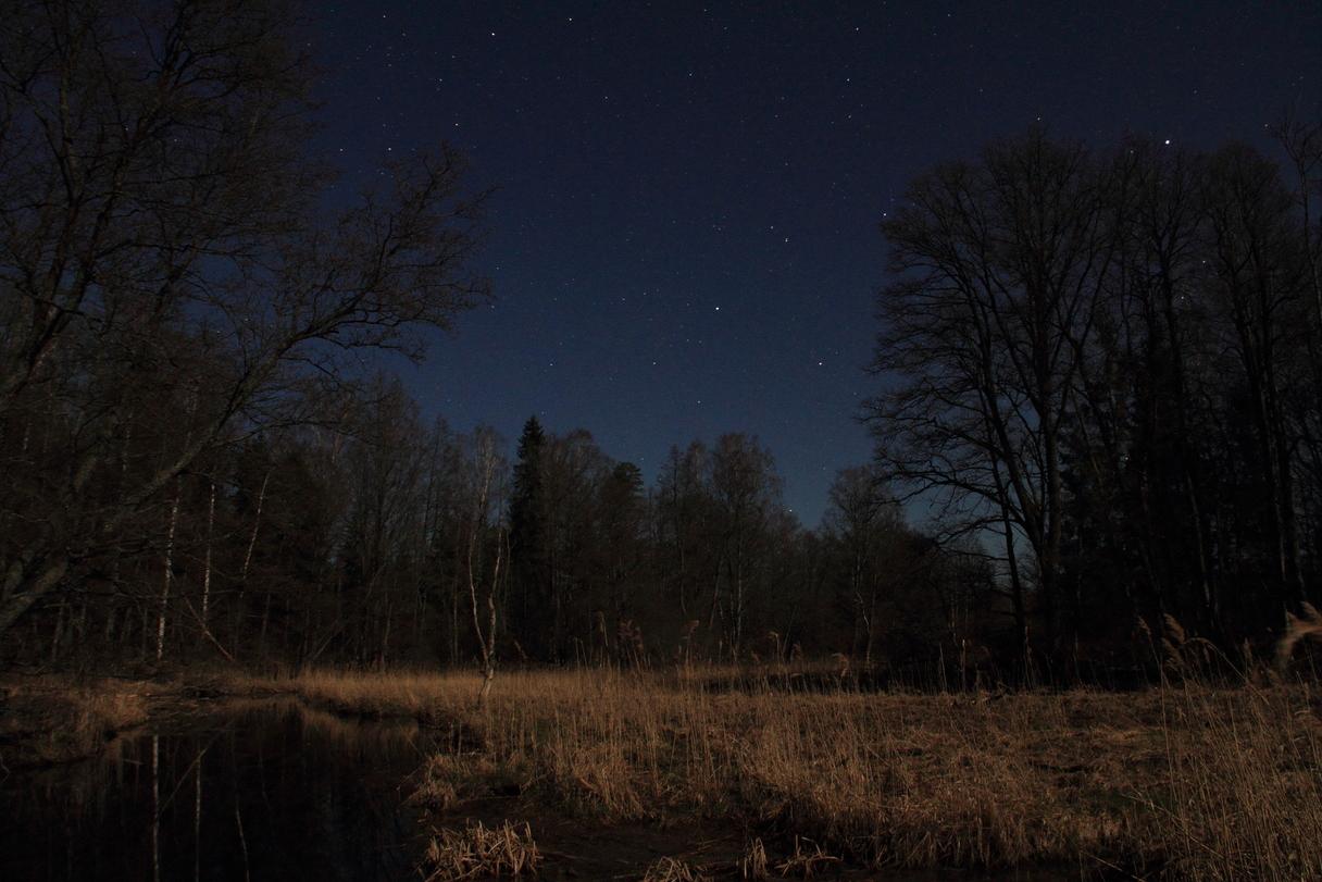 005-moon.jpg